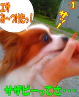 エサ発見〜☆