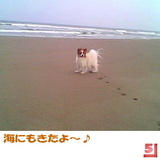 海にもきたよ〜♪