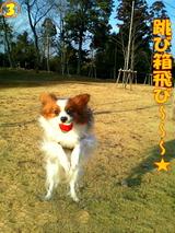 跳び箱飛び〜〜〜☆
