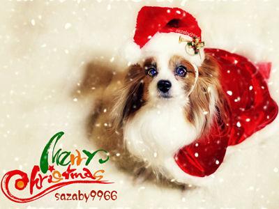 【Happy Merry Christmas 2013】 01