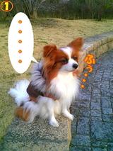 ボディーガード☆1