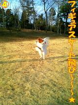フィギュアスケート飛び〜〜〜☆