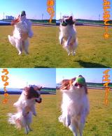 jump☆jump☆jump☆