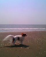 海に到着♪