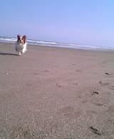 海だぁ〜☆