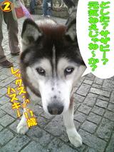 ボディーガード☆2
