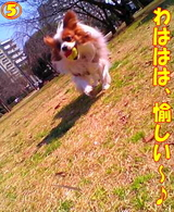 楽しい〜♪