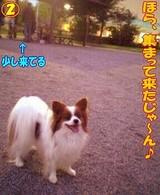 雨の日のお散歩☆2