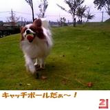 キャッチボールだぁ〜!