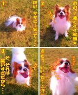 笑顔・・・☆