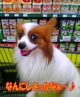 お買い物〜☆