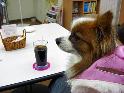 アイスコーヒー★�