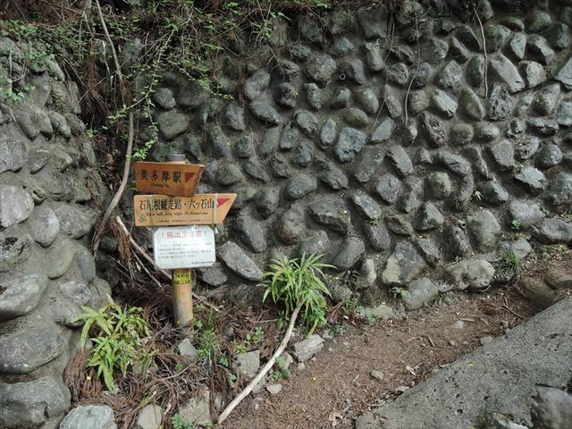 DSCN7444_R