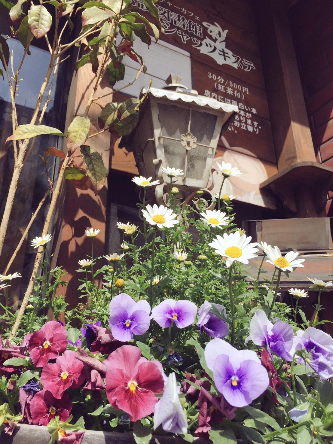 メイドの暮らし ep10 メイドが営む 私設図書館カフェ「シャッツキステ」