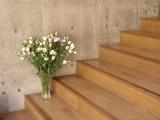 大階段の花