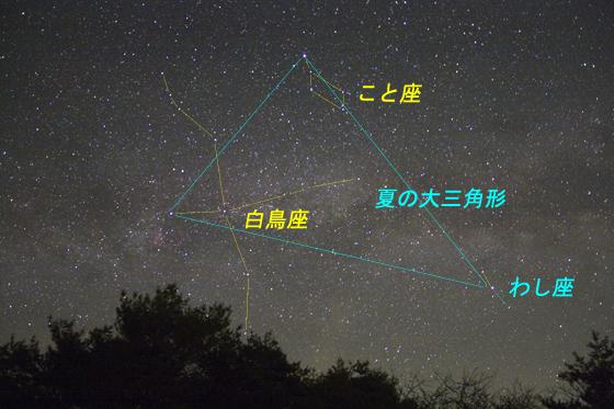 c225b504.jpg