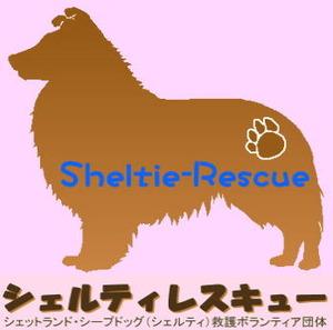 Shelti_ResqueHPbanner[1]