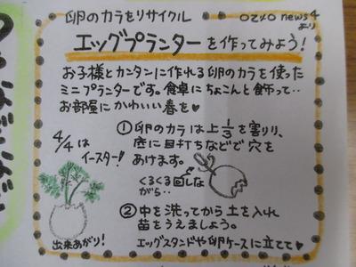 IMG_0007 (2)