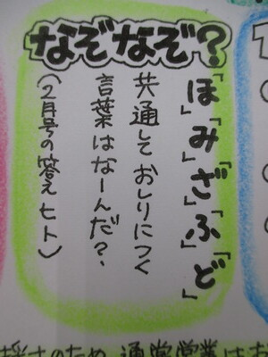 IMG_0008 (1)