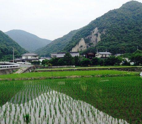 9tozandoiriguchi