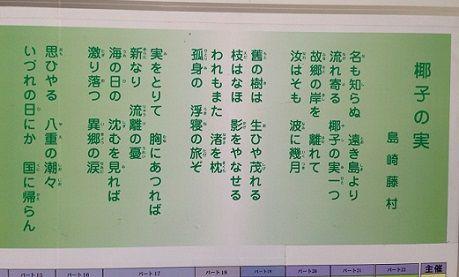 17yashinomi