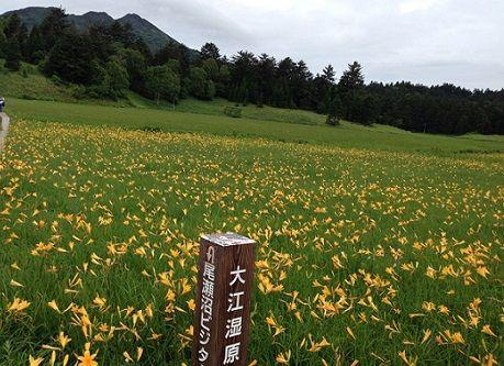 oze_oeshitsugen