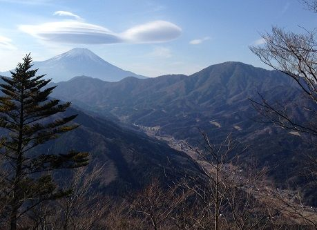 fujimishotai_tonno1s