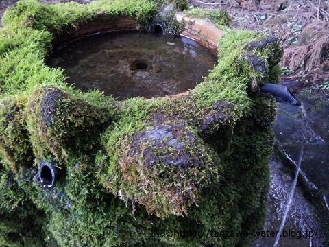「護摩屋敷の水」20210326再訪05