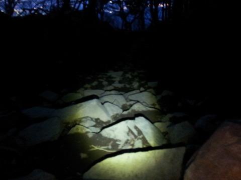 丹沢大山 夜間登山