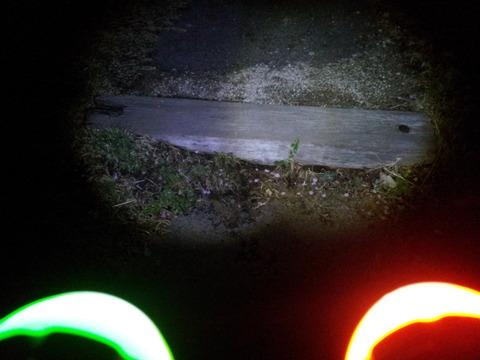 スーパーLEDズームライト 改造比較03