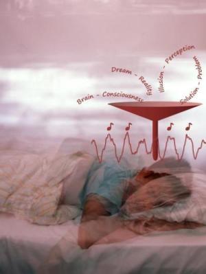 睡眠中に記憶は強化できる