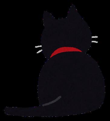 【悲報】黒猫はインスタ映えしないから保護猫の貰い手が少ないらしい!!ほんとにインスタ映えしないのか??