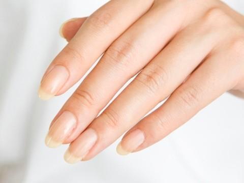 【画像あり】爪の短い女ってwwwwwwwwwwwww