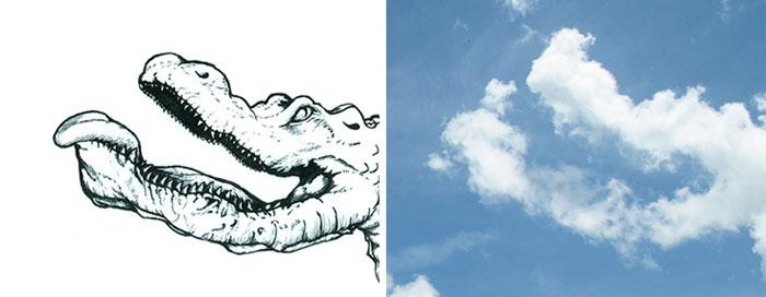 cloud6