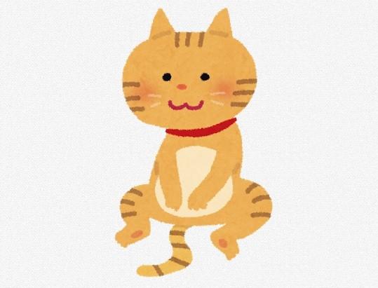座っている猫のイラスト