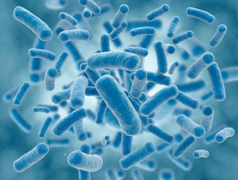 Un-nouvel-antibiotique-prometteur