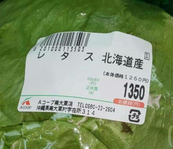 レタス一玉1350円 野菜高騰が離島の生活に大打撃の画像