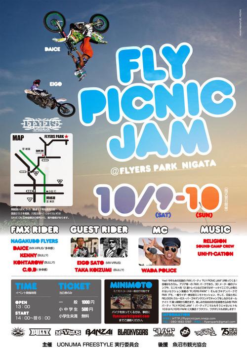 2011_flypicnic