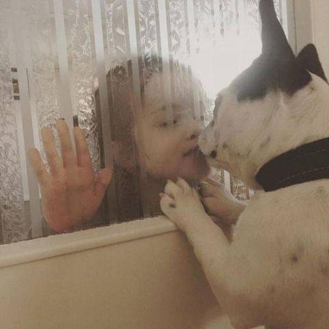 Photo3 : 仲良きことは美しきかな (投稿者:Krishna様)