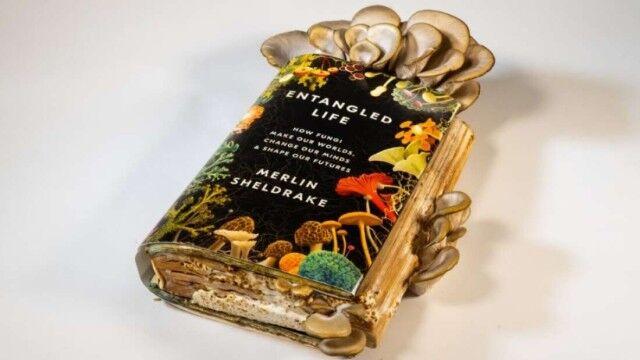 ある意味自給自足かな?自分の書いたキノコの本でキノコを栽培し、それを食べるという菌類学者の面白実験