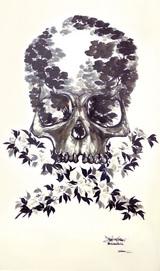 Skull&Bone_480
