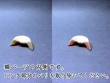 20110902_bori_12