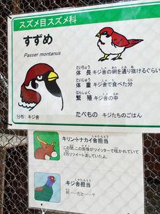 【画像】 スズメの「悪意ある」解説板が話題に 大森山動物園内の「キジ舎」