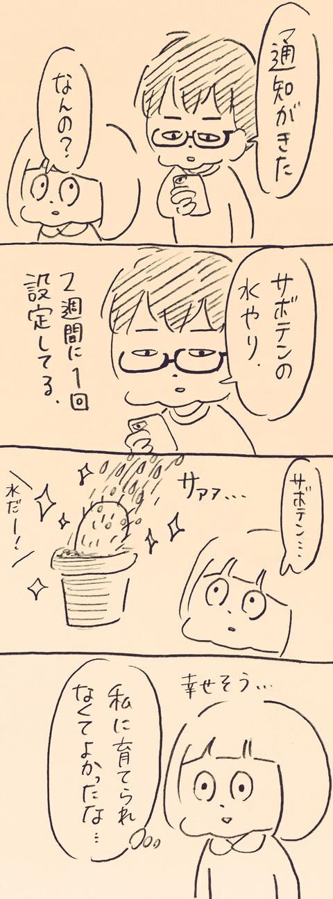 IMG_2409