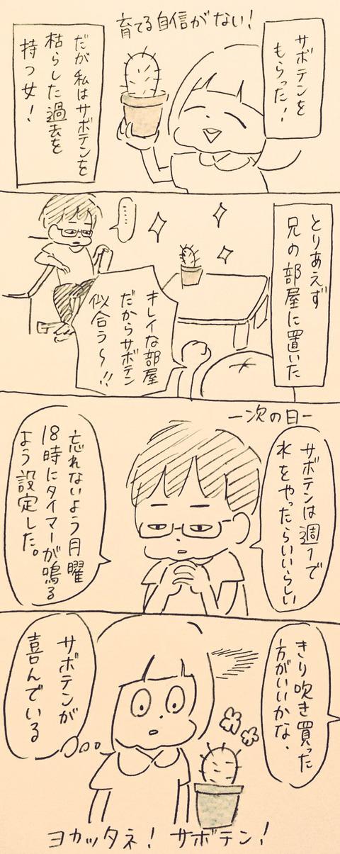 IMG_9618