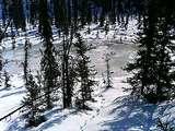 凍っている川