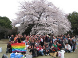 お花見2009
