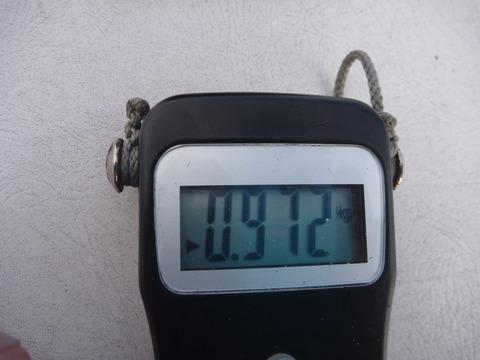 P1070173