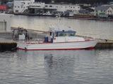 P1231436 三崎港入港 - 船名なし