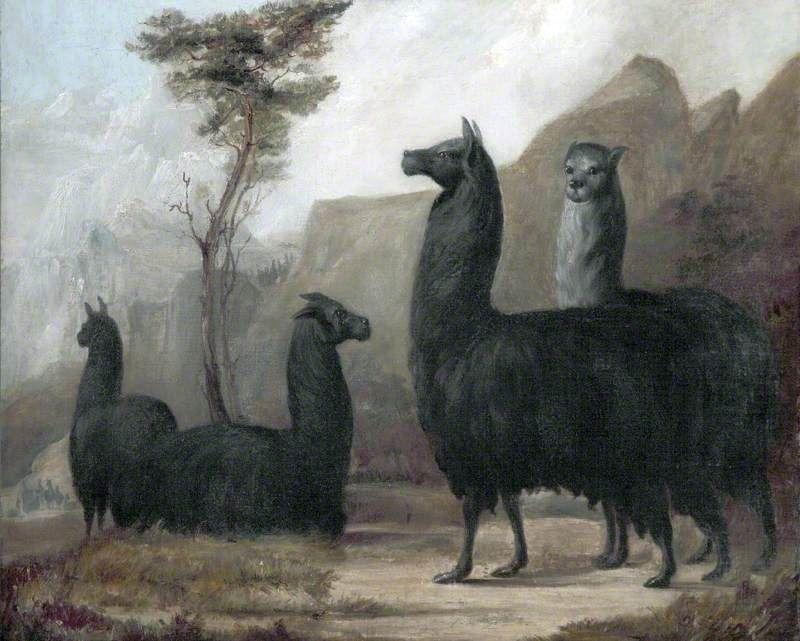 動物たちの西洋絵画その15:アガ...